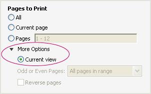 現在のビューをコピーする pdf