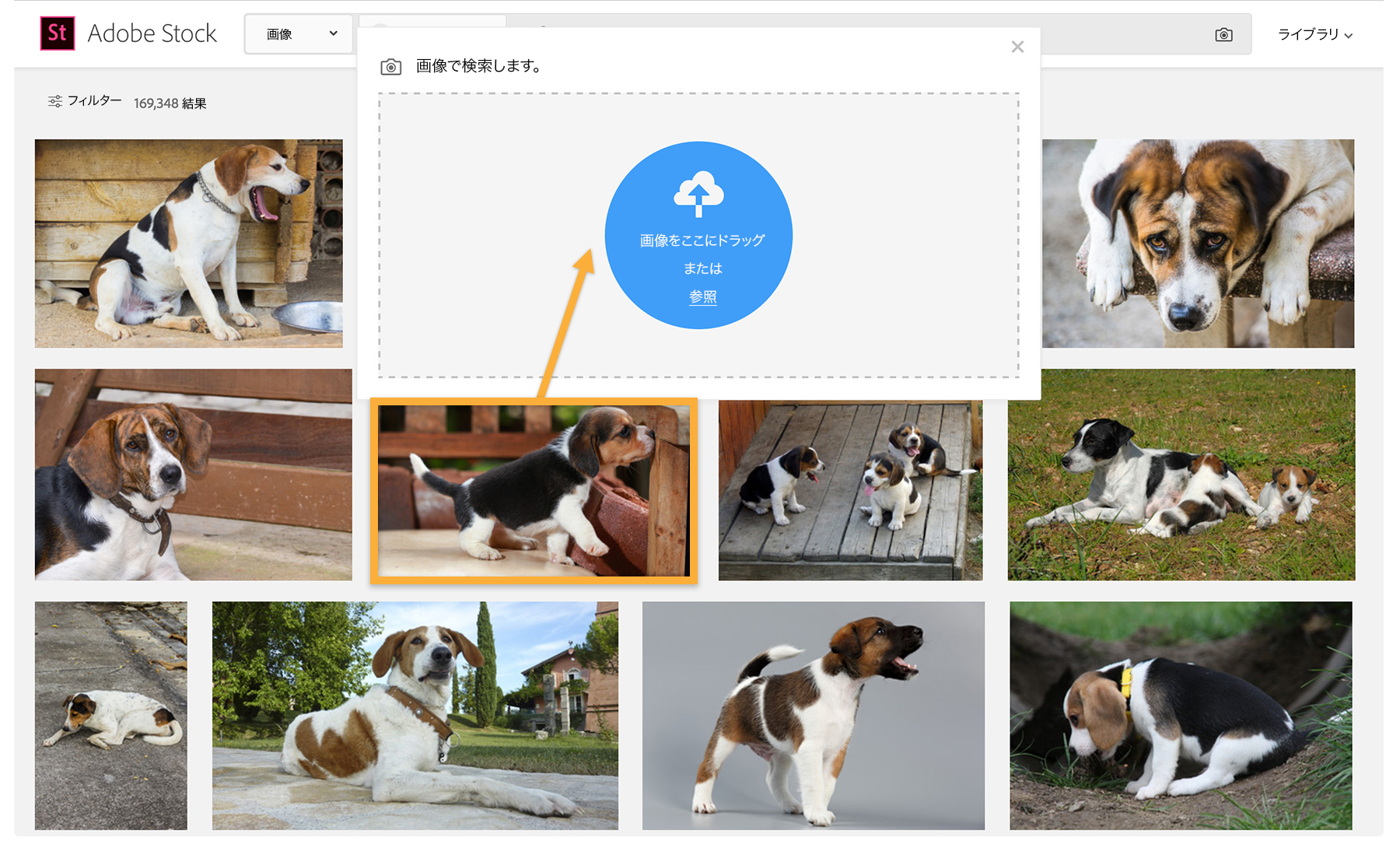 visual-reverse-image-search_2