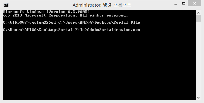 AdobeSerialization.exe 명령 실행