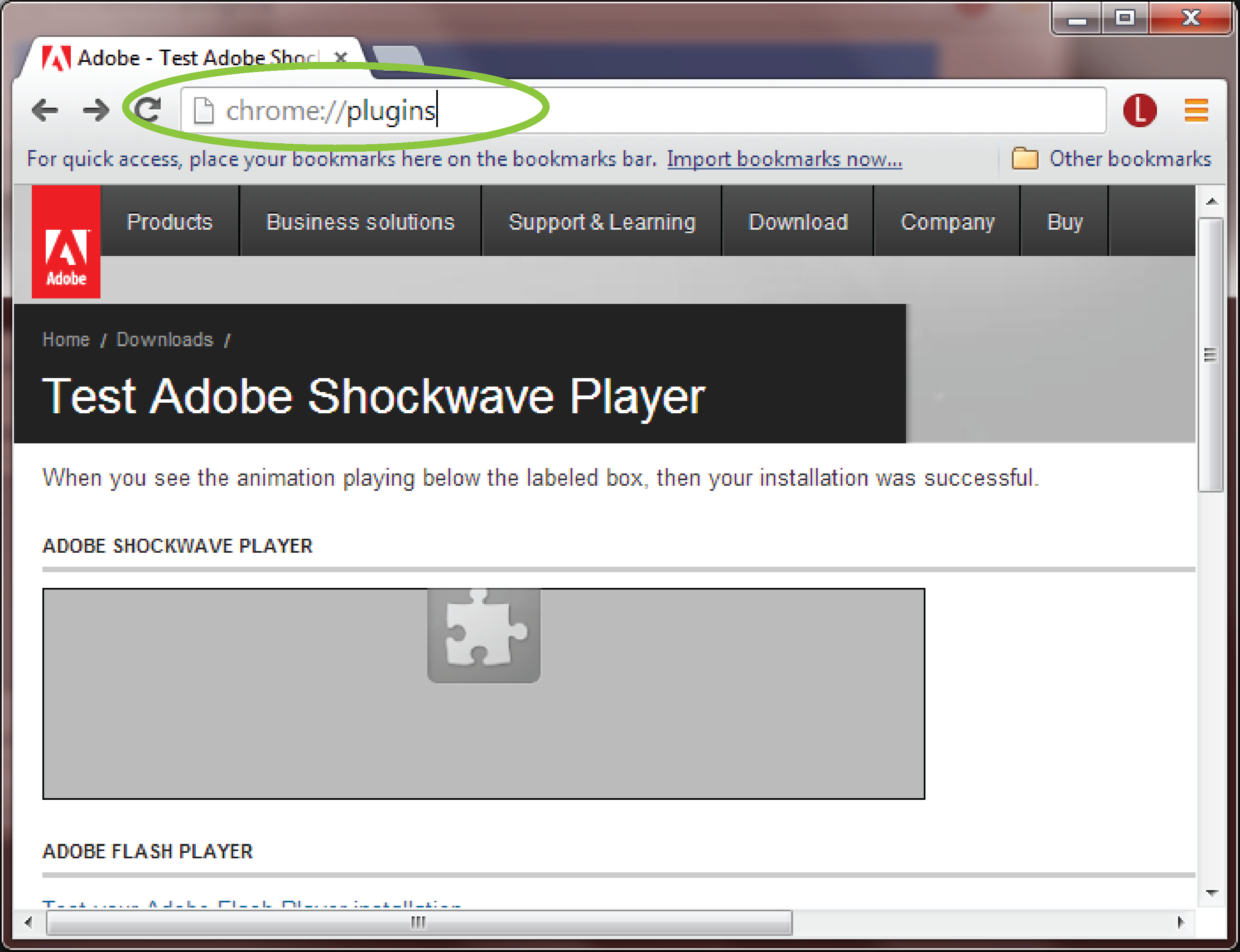 adobe shockwave standalone